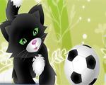 Köpek Futbolu
